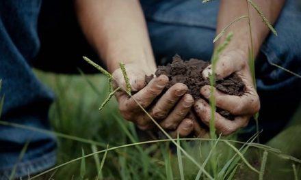 """Conferencia: """"Agricultura Bioenergética, la nueva semilla"""""""