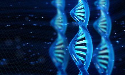 """Taller: """"Activando hebras de ADN"""""""
